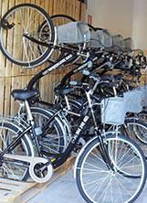 Tours y Alquiler de Bicicletas en Bilbao