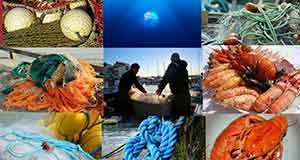 Mercado Marinero de Barrika del 15 al 17 de Junio